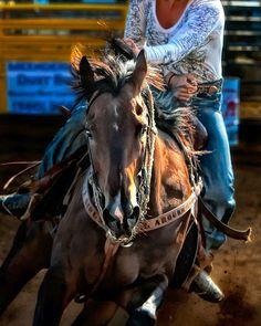 Reining barrel racing rodeo western ranch cowboy cowgirl farm show performance equine horse equestrian pony quarter charro vaquero gymkhana sliding stop cutting cowhorse prca