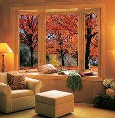 Bay windows <3