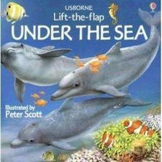 Lift the Flap Under the Sea
