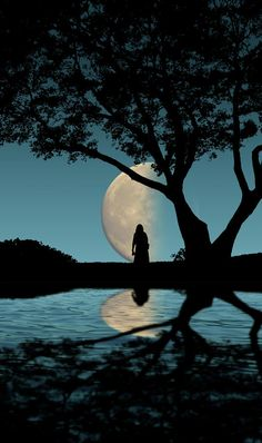 man and woman by moonlight silhouette - AOL Image Search Results Moon Moon, Sun Moon Stars, Moon Art, Blue Moon, Moon Photos, Moon Pictures, Sombra Lunar, Moon Dance, Shoot The Moon