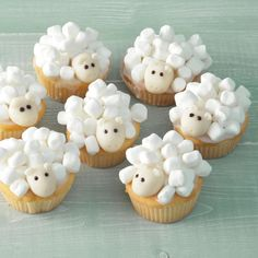 Nice treat: this is how you make these cute sheep (video) - Cupcakes Cupcakes Fondant, Sheep Cupcakes, Animal Cupcakes, Cupcake Cakes, Monster Cupcakes, Duck Cupcakes, Jungle Cupcakes, Sheep Cake, Elephant Cupcakes