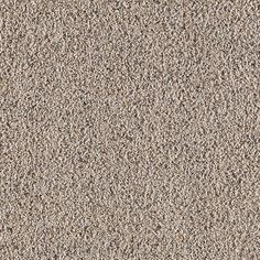 Action Figure Fleck By Resista Soft Style From Flooring America Carpet Reviews Ideas