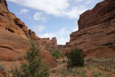 Canyon de Chelly, 2013 - we're already planning our trip for 2014! Visit our website for full itinerary and booking details.