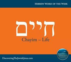Biblical Hebrew, Hebrew Words, Israel, Hebrew Quotes, Bible Dictionary, Learn Hebrew, Word Pictures, Simple Words, Torah
