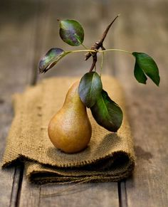 Still life photo of pear and leaves on burlap and wood. Love the textured burlap & the flow of the earth tones.