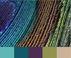 peacock color scheme | Peacock color scheme | For the Home (stuff I like)