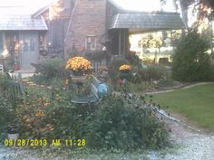"""one of my """"junkique' filled gardens by our house..."""