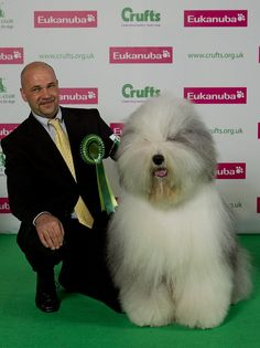 It's Crufts time again and there is nothing better to bring a bit of joy into your day than a few galleries of primped pooches and their owners (copyright onEdition 2012 ©)