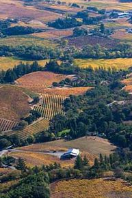 Hawley Winery is located on Bradford Mountain, overlooking Dry Creek Valley. The winery sits in the middle of the Hawley's 10 acre vineyard.
