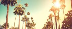 Where to Stay, Eat and Play in Palm Springs, California - Jetsetter
