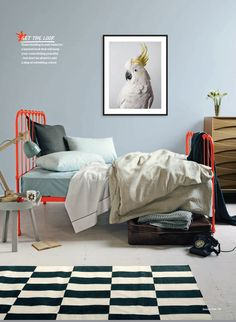 Scout bed.  Price unknown