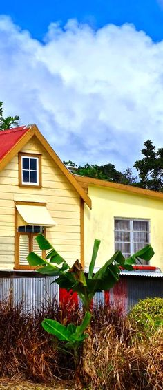#chattelhouses  #caribbean #barbados #colours #islands #westindian #westindies