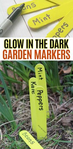 Kids will love to help make these homemade garden markers that glow in the dark! This is a super easy garden project for kids and families to make together. These DIY garden markers require just. Mint Garden, Easy Garden, Diy Garden Decor, Spring Garden, Vegetable Garden For Beginners, Gardening For Beginners, Gardening Tips, Garden Projects, Projects For Kids