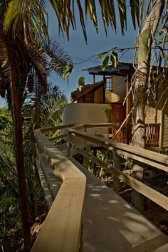 Our Canopy View Tree Houses are located 200 feet above the Caves Branch River. There are no elevators to these magnificent treehouses, its about 160 steps to reach your suite. www.belizetreehouses.com