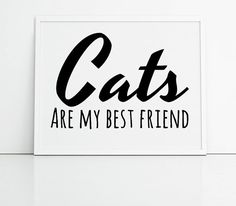 Cat lovers wall art, cats are my best friend, cat quotes typographic print, crazy cat lady gift, gift for cat lover, modern quotes, UK art.