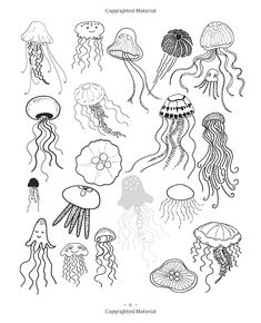20 Ways to Draw a Jellyfish and 44 Other Amazing Sea Creatures: A Sketchbook for Artists, Designers, and Doodlers: Trina Dalziel: 9781631590696: Amazon.com: Books