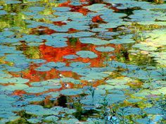 monet lilly pond watercolour - Google Search