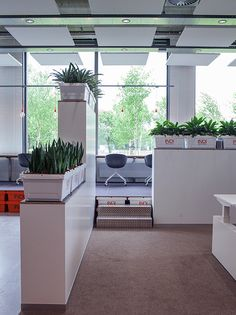 ©studiomfd, office, design, creative office, partition, crates, plants, INDI, Groningen (www.studiomfd.com)