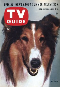 The history of television at your fingertips with the TV Guide Magazine Cover Archive - Covers from 1953 to today - including TV's biggest shows and stars like Lucy and John Wayne Rough Collie, Collie Dog, Cool Magazine, Magazine Covers, Vintage Television, Tv Land, Old Tv Shows, Vintage Tv, Tv Guide