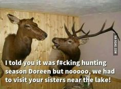 74 Best Hunting Memes Images Hunting Quotes Hunting Stuff Deer