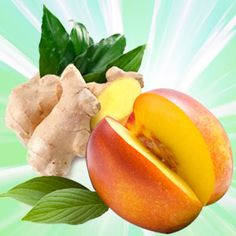Natures Garden Nectarine White Ginger Burst Fragrance Oil:  A refreshing blend of nectarine and spiced ginger makes this a perfect energizing way to start your day.  Top:  Nectarine, Mandarin, Peach, Yuzu, Lime  Mid:  Lily, Lilac, Honeysuckle, Jasmine  Base:  Sandalwood, Musk.  #fragranceoil #fragranceoils #fragrance