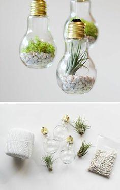 Mini-Terrarium aus alten Glühbirnen - für geschickte Finger #diy