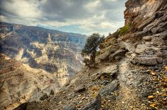 Jebel Shams Canyon Didn't want to go because i 'm scared of heights but it was amazing.100% recommended.