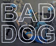 "Zbigniew Sikora ""Bad Dog II"" 2014"