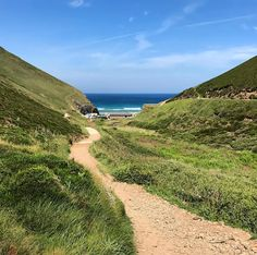 Footpath to Chapel Porth Beach in north Cornwall. Friday was such a glorious day for a hike.