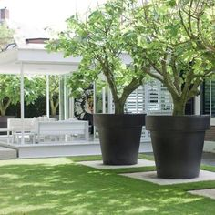 Large planters for trees pots planters nothing says pow in a garden like oversized decor the . large planters for trees Small Gardens, Outdoor Gardens, Dream Garden, Home And Garden, Big Garden, Succulents In Containers, Large Containers, Contemporary Garden, Garden Planters