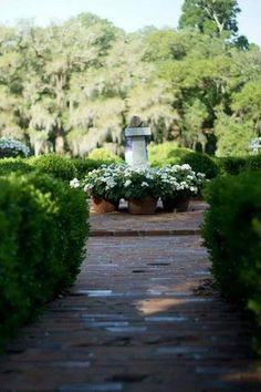 Images of Afton Villa Gardens, Saint Francisville - Attraction Pictures - TripAdvisor