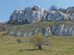 Chráněná krajinná oblast Pálava, Palava (Pavlov hills) is composed of limestone. Limestone originated in the sea from the Mesozoic era and was lifted during the alpine orogeny in the Tertiary