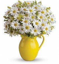 Fresh Cut Flowers - Sunny Day Pitcher of Daisies Bouquet Easter Flowers, Summer Flowers, Fresh Flowers, Beautiful Flowers, White Flowers, Deco Floral, Arte Floral, Birth Month Flowers, Birth Flower