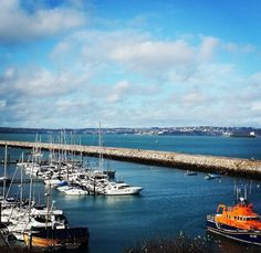A sunny day at Harbour Lights in Brixham, by Louise. #brixham #devon