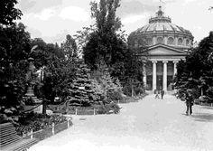 Aleea centrală a Grădinii Episcopiei care duce la Ateneul Român, în anul 1914