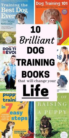 10 of the best dog training books for puppys and older dogs. The only ones worth bothering with. Cesar Millan and more giving you valuable tips! training 10 Dog Training Books That Do What They Say Best Dog Training Books, Puppy Training Classes, Service Dog Training, Training Your Puppy, Dog Training Tips, Service Dogs, Potty Training, Toilet Training, Training Schedule