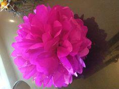 Belle's tissue paper flower x