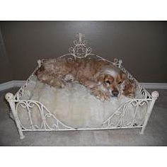 @Overstock - Your small four-legged friend will love the luxury of this antique pet bed. Hand-forged from iron and tole by master craftsmen and hand-finished in a multi-step process. This antique pet bed uses standard size bed pillow.  http://www.overstock.com/Pet-Supplies/Old-World-Antique-Paris-Flea-Market-Pet-Bed/6580878/product.html?CID=214117 $179.99