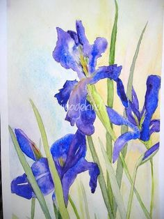 Japanese Irises by Linda Spollen Haile #watercolorarts