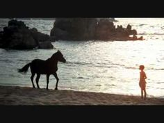 THE BLACK stallion, a montage; featuring sweeping cinematography from Caleb Deschanel, produced by Francis Ford Coppola. This film remains one of my great childhood loves. #film #horses