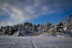 Tracks left by walkers and skiers on the snow-filled surface of Tennebekktjørna in Kanadaskogen, Bergen, Norway, January Bergen, Nature Photos, Photo S, Norway, Nature Photography, Track, Mountains, Landscape, Outdoor