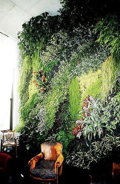 Living wall: Wooly pockets allow you to transform any wall into a jungle oasis