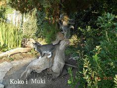 Garden Sculpture, Cats, Outdoor Decor, Animals, Gatos, Animales, Animaux, Animal, Cat