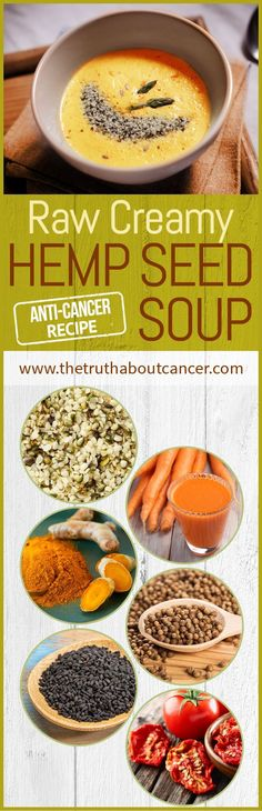 This anti-cancer soup is amazingly delicious with a tingling flavor and super easy to make!  Click on the image to check out this recipe for raw creamy carrot hemp seed soup and let us know how you liked it once you tried it!