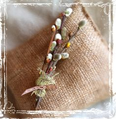 Fuzzy Pussy Willow Boutonniere - Country Rustic Wedding Natural - Woodland Weddings - Groom Groomsmen - Spring Twig Branches - Botanical. $8.00, via Etsy.