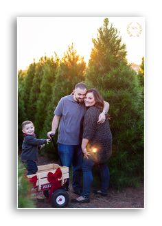 holiday family photo at a christmas tree farm