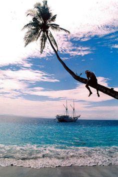 Mentawai Islands - West Sumatra, Indonesia