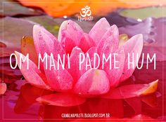 Transformation - moving from an impure state (mind, body, soul) to a pure state. Om Mani Padme Hum, Yoga Mantras, Yoga Meditation, Yoga Studio Design, Quotes Thoughts, Life Quotes Love, Yoga Inspiration, Buda Zen, Frases Yoga