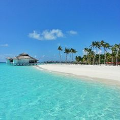 Hello from Kihaad Maldives Visit Maldives, Maldives Resort, Places To Travel, Places To Visit, Islands In The Stream, Paradise Places, Exotic Beaches, Sandy Beaches, What A Beautiful World