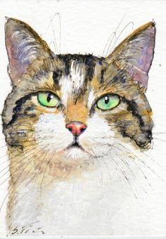 original ACEO * Gerry * white tabby cat, kitten, gato, chat, Katze by su-art